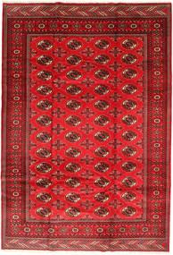 Turkaman Szőnyeg 201X293 Keleti Csomózású Rozsdaszín/Sötétpiros/Piros (Gyapjú, Perzsia/Irán)