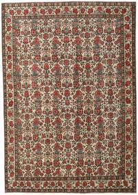 Ardebil Patina Szőnyeg 273X395 Keleti Csomózású Sötétszürke/Világosbarna Nagy (Gyapjú, Perzsia/Irán)
