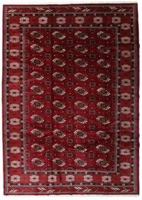 Turkaman Szőnyeg 204X285 Keleti Csomózású Sötétpiros/Sötétbarna (Gyapjú, Perzsia/Irán)