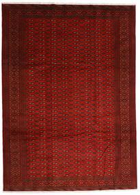 Turkaman Szőnyeg 248X340 Keleti Csomózású Piros/Rozsdaszín (Gyapjú, Perzsia/Irán)