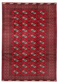 Turkaman Szőnyeg 199X282 Keleti Csomózású Sötétpiros/Piros (Gyapjú, Perzsia/Irán)