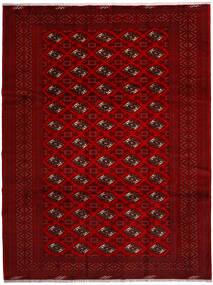 Turkaman Szőnyeg 258X344 Keleti Csomózású Piros/Sötétpiros/Sötétbarna Nagy (Gyapjú, Perzsia/Irán)