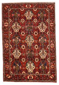 Bakhtiar Collectible Szőnyeg 207X307 Keleti Csomózású Sötétbarna/Rozsdaszín/Sötétpiros (Gyapjú, Perzsia/Irán)