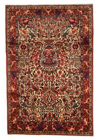 Bakhtiar Collectible Szőnyeg 208X311 Keleti Csomózású Sötétpiros/Sötétbarna (Gyapjú, Perzsia/Irán)