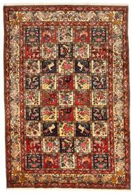 Bakhtiar Collectible Szőnyeg 212X311 Keleti Csomózású Sötétpiros/Sötétbarna (Gyapjú, Perzsia/Irán)