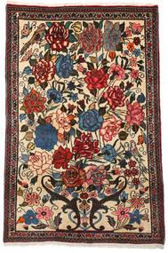 Bakhtiar Collectible Szőnyeg 100X154 Keleti Csomózású Sötétbarna/Bézs (Gyapjú, Perzsia/Irán)